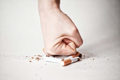 Tabakentzug Schritt für Schritt