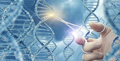 Wissenswertes über genetische Mutationen
