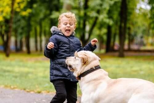 Mein Kind hat Angst vor Tieren: Was kann ich tun?