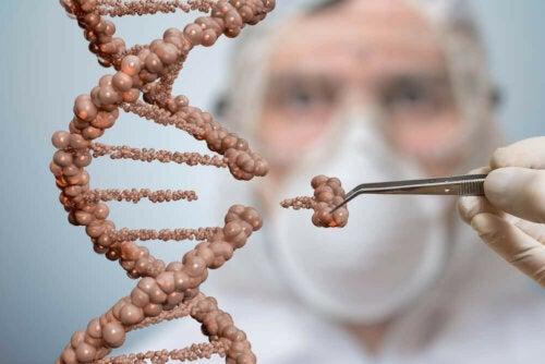 DNA Autotransplantation