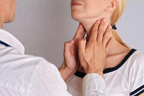 Welche Funktionen haben die endokrinen Drüsen?