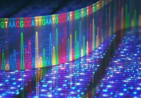 genetische Mutationen