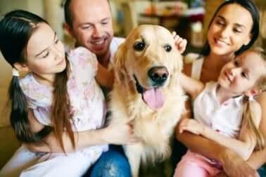 Familie hat keine Angst vor Hunden