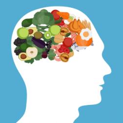 Low-Carb-Diät und Auswirkungen auf das Gehirn