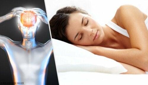 Schlafbedarf erwachsener Frauen