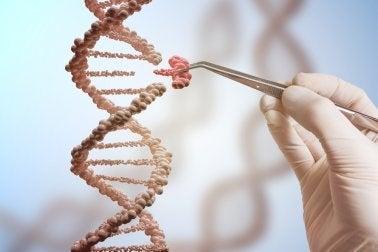 genetische Mutationen und ihre Folgen