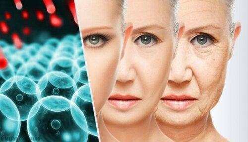 Alterungsprozess einer Frau