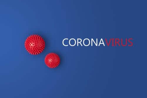 Eine neue Studie lässt vermuten, dass es zwei Arten Coronavirenstämme gibt