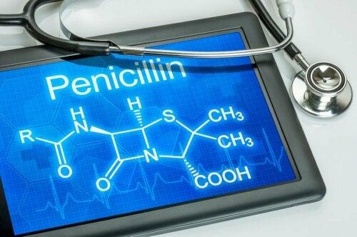 Wissenswertes über Penizillin