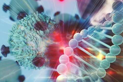 Immunsystem gegen Krebs: So entkommen die Krebszellen!