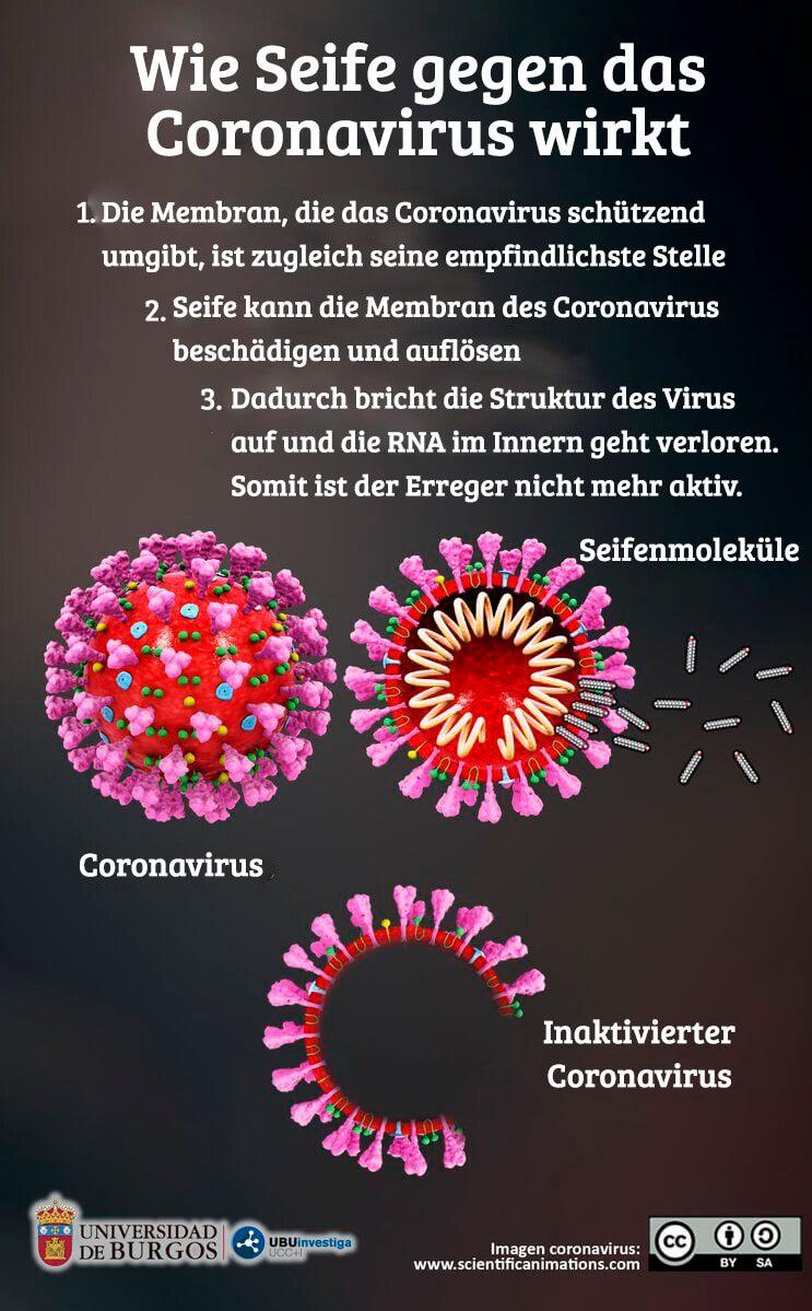 seife coronavirus wirkung