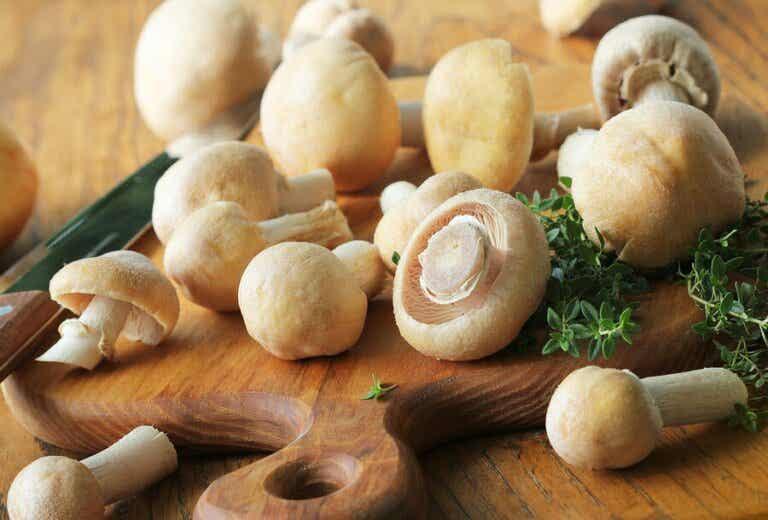 Drei kalorienarme Rezepte mit Champignons
