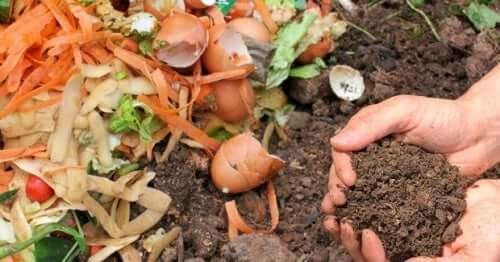 Kompost Komposthaufen