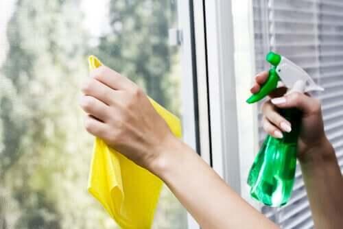 Umweltfreundliche Haushaltsreiniger für deine Fenster