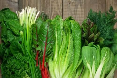 Grünes Blattgemüse liefert viel Folsäure