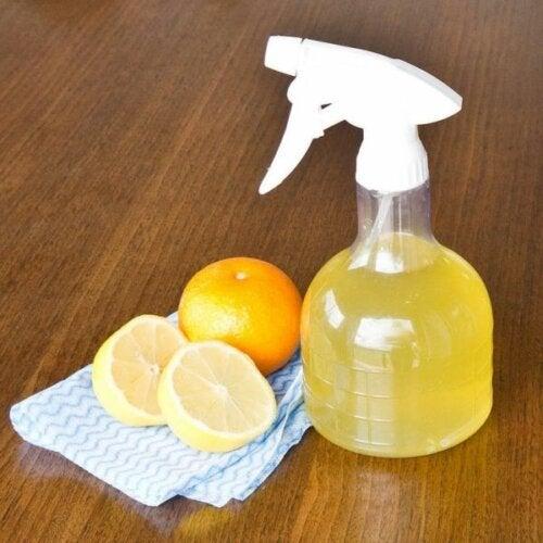 Umweltfreundliche Haushaltsreiniger mit Zitrone und weißem Essig
