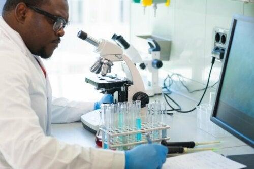 Viruslast im Labor untersuchen