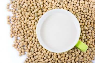 Vorteile von Sojaprotein