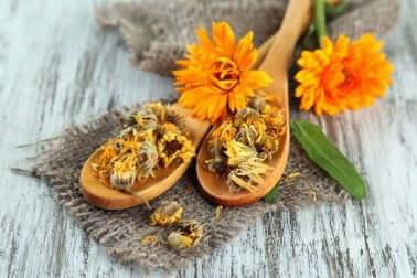 Ringelblume gegen Hitzeausschlag