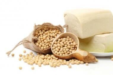 Sojaprotein und seine Nährwerte