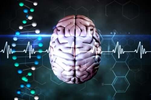 Die häufigsten Symptome einer Herniation oder zerebralen Einklemmung