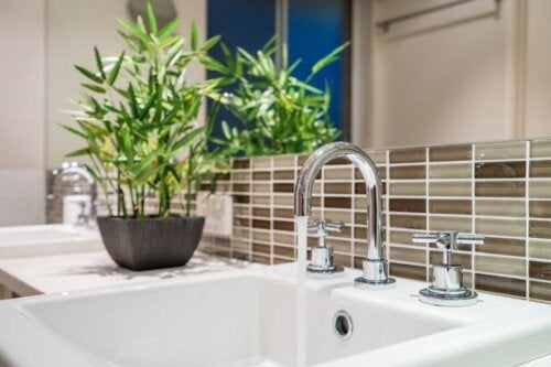 Bambus sollte in deinem Badezimmer nicht fehlen