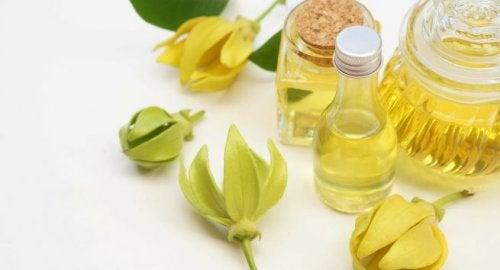 Ätherisches Ylang Ylang Öl gegen Angst