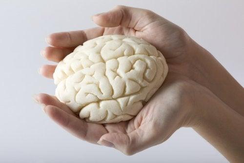Dein Gehirn verändert sich, wenn du Mutter wirst!