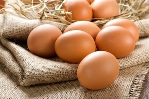 Omega-n-Fettsäuren in Eiern