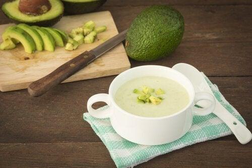 leckere vegane Vorspeisen mit Avocados