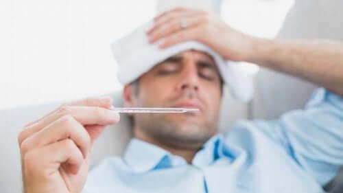 Holunder und andere Maßnahmen, um Grippesymptome zu lindern