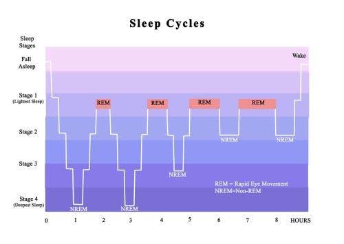 Schlaf und Schlafprobleme