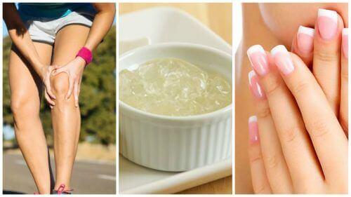 Farblose Gelatine: 11 Vorzüge, die du kennen solltest