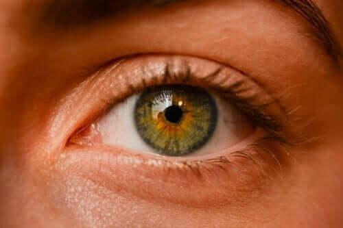 Pigmentflecken des Auges: Sind sie gefährlich?