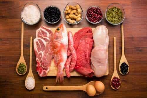 Was sind Proteine und welche Funktionen erfüllen sie?
