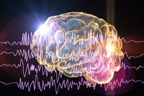 Arten von Epilepsie