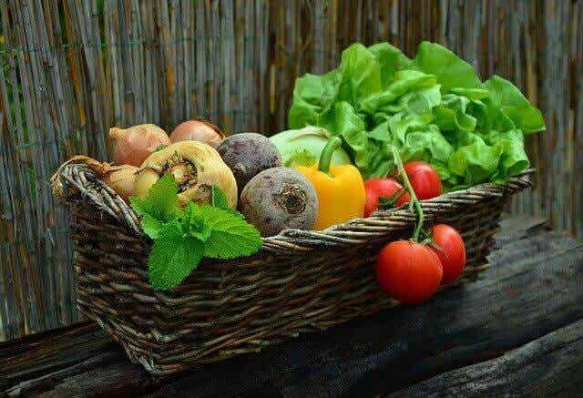 Ernährung bei Krebs, um das Wohlbefinden zu verbessern