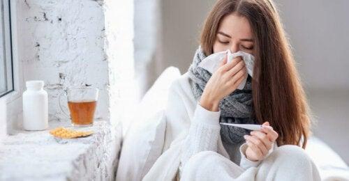 Holunder bei Grippe