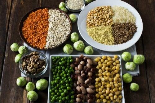 Proteine in pflanzlichen Lebensmitteln