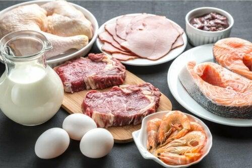 Proteine in Lebensmitteln