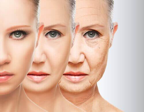 mit Kollagen - Alterungsprozess der Haut