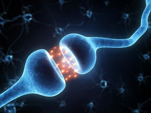 Krankheitsformen der Multiplen Sklerose