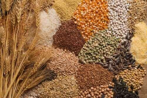 Drei Tipps, wie du Samen in deine Ernährung integrieren kannst