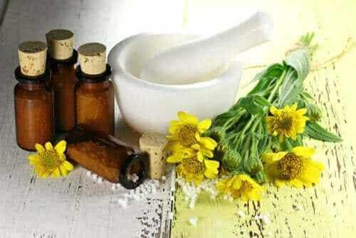 Die Heilpflanze Arnika: Vorteile und Gegenanzeigen