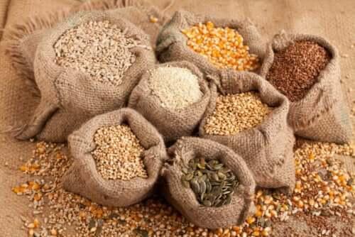 Samen in deine Ernährung - verschiedene Samen