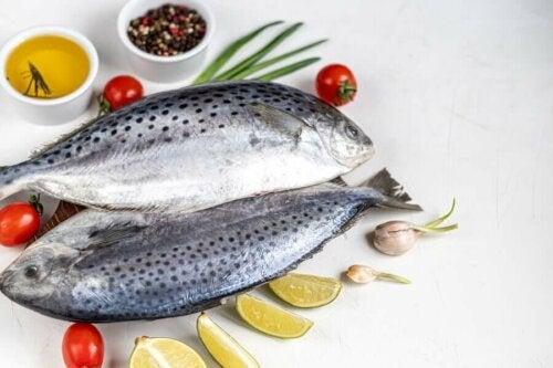 wissenschaftlich gestützte Diäten - atlantisch
