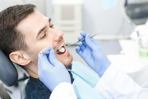Bakterien, die Zahnkaries verursachen