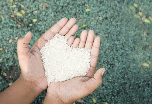 Vollkornreis - eine Handvoll Reis