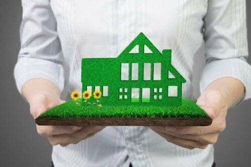 Ein nachhaltiges Zuhause: 12 Empfehlungen