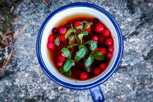 Tee frische Cranberrys